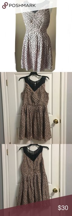 Lauren Conrad dress Lauren Conrad dress. Good for business casual and/or family events, brunch church etc (very versatile to most occasions) send me your offers 🖤✨ LC Lauren Conrad Dresses Mini