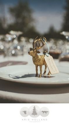Love these DIY place card holders/name tags for place settings at a wedding. Gold spray painted plastic animals with names written on a wooden and tied with ribbon. So cute! | Catering by Farm to Table Catering | www.farm2tablecatering.com | Photography by Kris Holland Photography