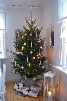 All I want for Christmas is a Trendy Tree - Casafina