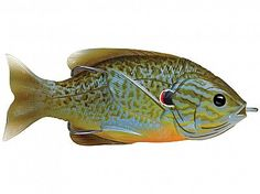 Buy the LIVETARGET Sunfish Hollow Body and more quality Fishing, Hunting and Outdoor gear at Bass Pro Shops. Fishing Tackle, Fishing Tips, Fishing Lures, Sport Fishing, Fishing Stuff, Ice Fishing, Salt And Water, Fresh Water, Topwater Lures