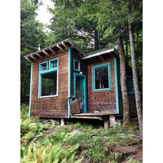 """""""A friend's cabin in spruce and """"makita blue"""" """""""