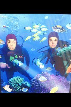 Aquarium of America's in New Orleans