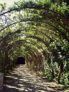 The Pergola in Mirabell Gardens in Salzburg, Austria. Where they filmed one of the scenes from Sound of Music!