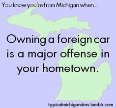 You know you're from Michigan when owning a foreign car is a major offense in your hometown. Michigan Facts, State Of Michigan, Detroit Michigan, Detroit Lions, The Mitten State, Michigan Travel, Great Lakes, Growing Up, Ohio