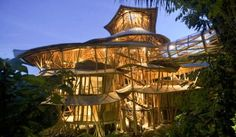 Kuvahaun tulos haulle treehouse