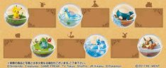 AmiAmi [Character & Hobby Shop] | Pokemon Terrarium Collection 6Pack BOX (CANDY TOY)(Released)