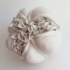 Hand Built Pottery, Seed Pods, Fungi, Ceramic Pottery, Sculpting, Seeds, Sculptures, Happy, Crafts