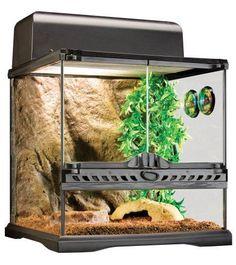 Terrarium Lizard Snake Reptile Pet Glass Amphibians Set Decor Lamp Reptile Cave - http://pets.goshoppins.com/reptile-supplies/terrarium-lizard-snake-reptile-pet-glass-amphibians-set-decor-lamp-reptile-cave/