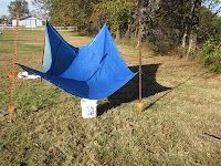 A clean tarp set up to collect rainwater. Remember to pre-filter then purify (chemical, boil, etc) before drinking. Note, the use of a 5 gallon collection bucket. Survival Food, Camping Survival, Outdoor Survival, Emergency Preparedness, Survival Tips, Survival Skills, Emergency Supplies, Wilderness Survival, Emergency Planning