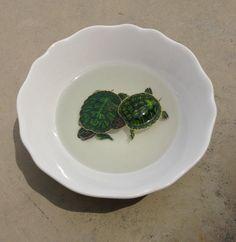 keng lye dos tortugas en un plato
