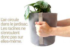 jardisac Garden Pots, Planter Pots, Herbs, Collection, Roots, Garden Planters, Herb, Medicinal Plants