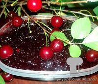 Μοναδικές «Συνταγές φαγητών» και γλυκών, επιλεγμένες από τις κορυφαίες διαδικτυακές κουζίνες. Cherry, Fruit, Blog, Blogging, Prunus