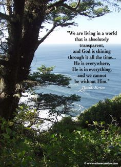 """""""God is shining... everywhere, in everything. We cannot be without God."""" Thomas Merton"""