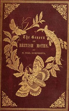 Decorative cover of 'The Genera of British Moths' by H. Published 1860 by Paul Jerrard & Sons. Illustration Art Nouveau, Book Illustration, Illustrations, Book Cover Art, Book Cover Design, Book Art, Vintage Book Covers, Vintage Books, Old Books