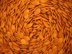 (More) pumpkin seeds by TomMartinArt, via Flickr