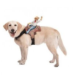 DOG RIDERS COWBOY COSTUMEProduct DetailsIncludes the adjustable dog harness with cowboy rider  One size fits most dogs  Look for the five other dog rider costumes  Product DescriptionSize: SmallColor: Multi  Ride 'em cowboy Nothing is more creative than this dog rider cowboy costume. Includes the adjustable harness to fit most dogs. Also look for the dog rider jockey, monkey, mailman, headless horseman, and goblin harnesses. Paper magic has one of the largest and fastest–growing halloween…