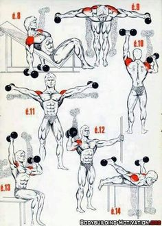Personal Trainer Shoulder Workout is part of Bodybuilding workouts - Fitness Workouts, Gym Workout Tips, Easy Workouts, At Home Workouts, Fitness Tips, Fitness Motivation, Muscle Fitness, Traps Workout, Workout Body
