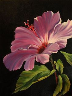 s hibiscus paintings on black in 2019 painting, flowers, Watercolor Flowers, Watercolor Paintings, Rose Paintings, Arte Floral, Pictures To Paint, Painting Inspiration, Flower Art, Art Drawings, Canvas Art