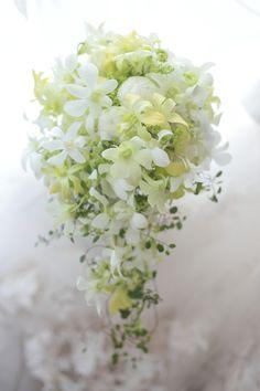 ゴージャスなイメージのある蘭の花を、可憐に華奢なブーケに。というのはここ数年の自分のテーマです。このブーケのブートニアをfacebook(←強化月間中)で...