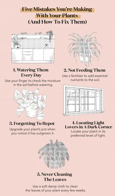 house plants 247275835778330879 - Plant Mistakes and how to fix them copy Source by TheHealthyMaven Weird Plants, Big Plants, Garden Plants, Easy House Plants, Suculentas Diy, Inside Plants, Mason Jar Diy, Plant Decor, Houseplants