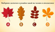 Сегодня мы предлагаем вам подумать об осени. Закройте глаза и представьте, как разноцветная листва осыпается с деревьев, накрывая землю ярким одеялом.
