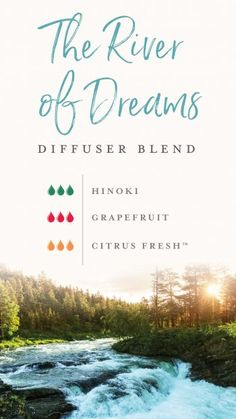 Young Living Essential Oils diffuser blend as it you're on holiday, to relax and unwind with Hinoki, Grapefruit and Citrus Fresh Yl Essential Oils, Eucalyptus Essential Oil, Essential Oil Diffuser Blends, Young Living Essential Oils, Doterra Diffuser, Doterra Oil, Young Living Diffuser, Young Living Oils, Citrus Oil
