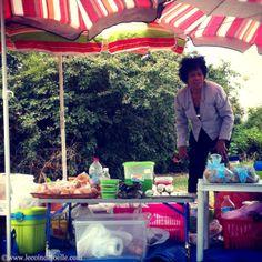dames du lac 9 copie ☆ les dames du lac ☆ la cuisine, le Vietnam à Bordeaux Les Aubiers Tram C au bord du lac