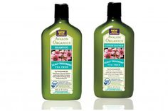 Avalon Organics Tea Tree Shampoo and Conditioner