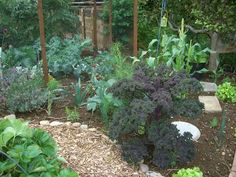 1000 images about allotment ideas on pinterest raised for Allotment tools for sale