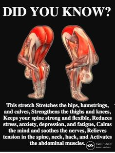 #stretch #yoga #muscles #move Yoga Fitness, Health Fitness, Physical Fitness, Fitness Memes, Funny Fitness, Wellness Fitness, Fitness Diet, Fitness Goals, Fitness Motivation