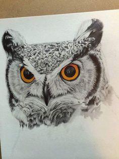 Owl Eye Tattoo, Owl Tattoo Drawings, Animal Drawings, Art Drawings, Fly Drawing, Eagle Drawing, Owl Art, Bird Art, Lechuza Tattoo