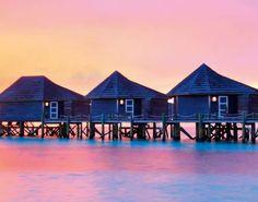 """Gewinne mit Miamoda 7 Tage Luxus-Ferien für zwei Personen auf den Malediven oder 5´000.- in bar!  Zusätzlich gibt es im Wettbewerb 2'500.-, 500.- oder 100.- in bar zu gewinnen.  Mach hier mit, du findest den Wettbewerb unten auf der Seite bei der Kategorie """"Gewinnspiel"""": http://www.gratis-schweiz.ch/gewinne-7-tage-malediven-oder-5000-bar/"""