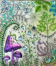 Floresta Encantada Adult ColoringColoring PagesColoring BooksJohanna BasfordColored PencilsEnchanted Forest