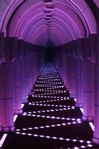 purple maze. I will have this at one of my bday parties. Doesnt matter what year #purplecrazy #birthday