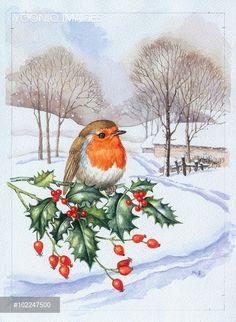 Gallery.ru / Фото #17 - 2 - Fyyfvbwrtdbx1957 Old Time Christmas, Christmas Bird, Christmas Scenes, Background Tile, Motifs Animal, Cute Animal Illustration, Robin Bird, Decoupage Art, Bird Pictures