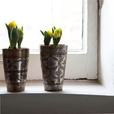 Forcing bulbs - beautiful containers