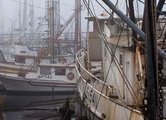 New Bill Would Reduce Funding to 'Overfishing' Operations