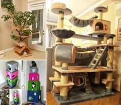 DIY Cat Trees | The WHOot