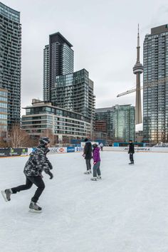 Toronto Views's albums Toronto Ontario Canada, Toronto City, Downtown Toronto, City Aesthetic, Travel Aesthetic, Outdoor Skating, 2nd City, Dream City, Canada Travel
