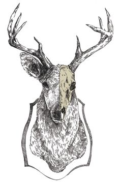 Awesome illustrations by Mikołaj Cielniak. Check out the portfolio of Mikołaj for more work http://getinspiredmagazine.com/portfolios/mikolaj-cielniak/ #illustration #inspiration