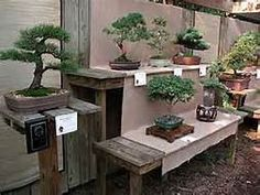Bonsai Display Benches - Bing images