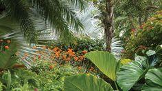 raymond-jungles-inc-portfolio-2.jpg (1440×810)