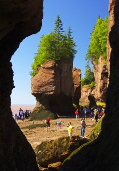 100 Places to visit in Canada in summer include The Flowerpots in New Brunswick at the Hopewell Rocks East Coast Travel, East Coast Road Trip, East Coast Canada, Hopewell Rocks, Acadie, Voyage Canada, Visit Canada, Canada Eh, Canada Canada