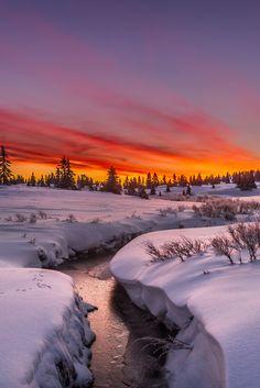 sundxwn: Follow the stream to a new morning by Jørn Allan Pedersen