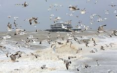 A flock of seagulls fly over the swollen sea at Brighton