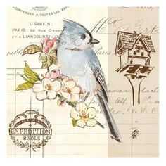 Art Print: Birdhouse Art Print by Chad Barrett by Chad Barrett : 16x16in