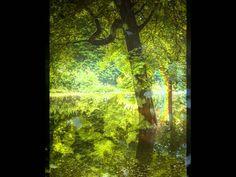 Es werde Licht - in 432 Hertz Sven Wild http://www.namara-music.de