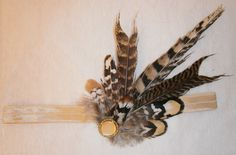 Moth, Insects, Feather, Jewelry Making, Handmade, Animals, Quill, Animais, Hand Made