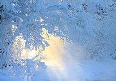 and the light enters the ... by kariliimatainen