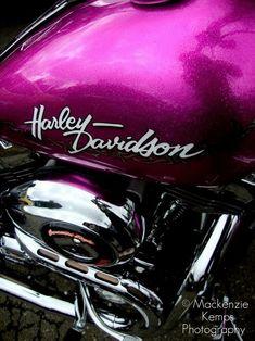 Harley Davidson. Photography by Mackenzie Kemps.